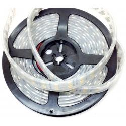 Tiras flexible de 240 Led 3528 Tube IP68 12v.